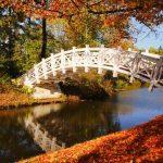 белый мост