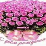 Поздравления с днем рождения девушке